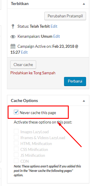 Cache Options pada WP Rocket